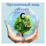 Городской Химический  квест «Органичный мир»
